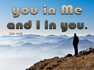 John 14:20 You In Me And I In You (brown)