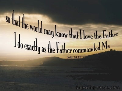 John 14:31 I Do Only As The Father Commands (gray)