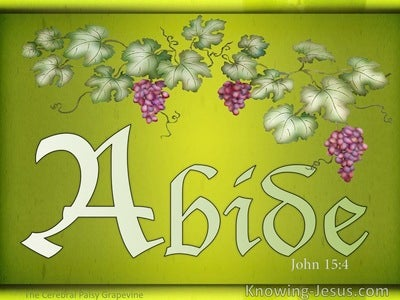 John 15:4 Abide In The Vine (white)