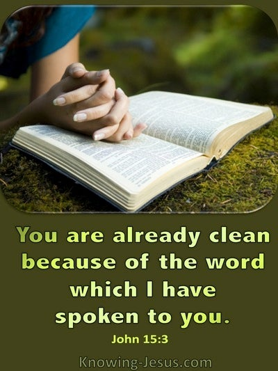 John 15:3 You Are Clean Because Of The Word (green)