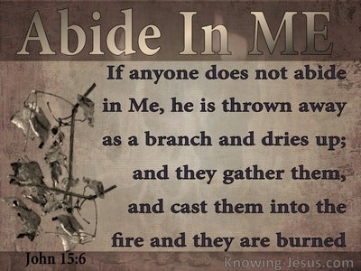 John 15:6 He Who Does Not Abide In Me Is Thrown Away (brown)