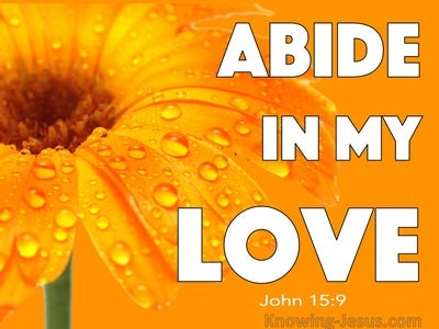 John 15:9  Abide In My Love (white)