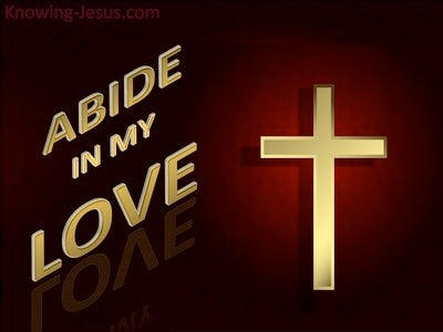 John 15:9 Abide In My Love (black)