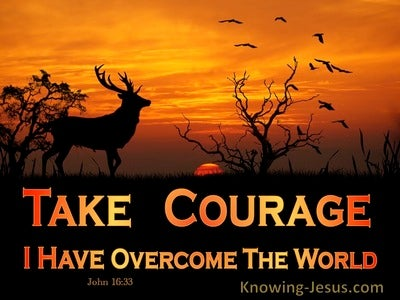 John 16:33 Take Courage I Have Overcome The World (orange)