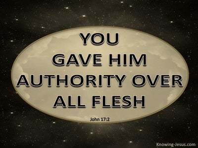 John 17:2 You Gave Him Authority Over All Flesh (gold)