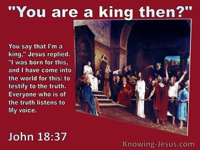 John 18:37 Are You A King. Jesus Replied To This I Was Born And Fot This Have Come Into The World (red)