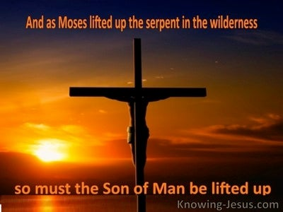 John 3:14 The Wilderness Serpent (orange)