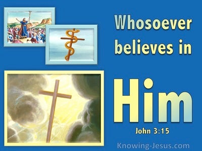 John 3:15 Whoever Believes In Him (blue)