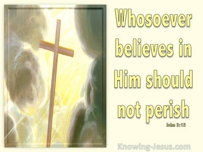 John 3:15 Whoever Believes In Him (yellow)