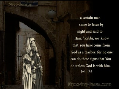 John 3:2 Nicodemus Came To Jesus By Night (brown)
