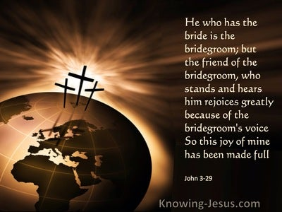 John 3:29 He Who Has The Bride Is The Bridegroom (brown)