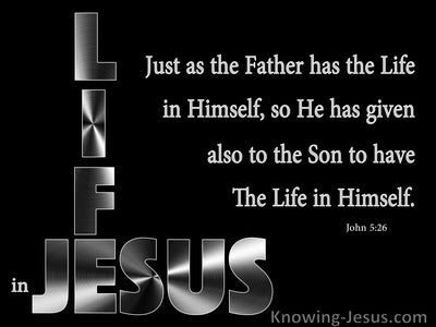 John 5:26 The Son Has Life In Himself (black)