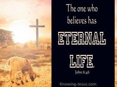 John 6:46 He Who Believes Has Eternal Life (black)