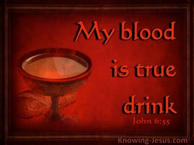 John 6:55 My Blood Is True Drink (red)