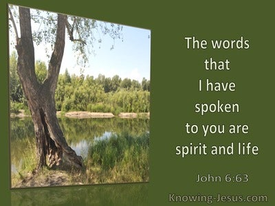 John 6:63 The Words I Have Spoken Are Spirit and Life (windows)11:02