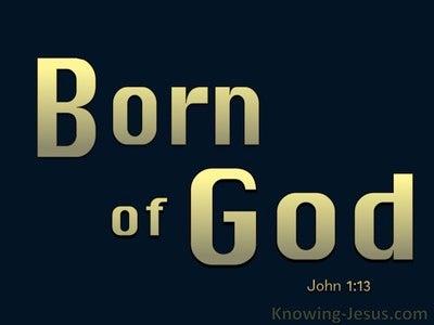John 1:13 Not Born of Man's Will But Of God (gold)