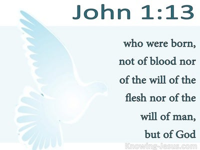 John 1:13 Not Born of Man's Will But Of God (white)