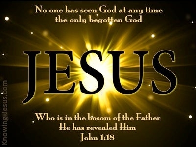 John 1:18 No One Seen God At Any Time (black)
