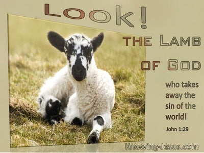 John 1:29 Look. The Lamb Of God Who Takes Away The Sin Of The World (windows)03:15