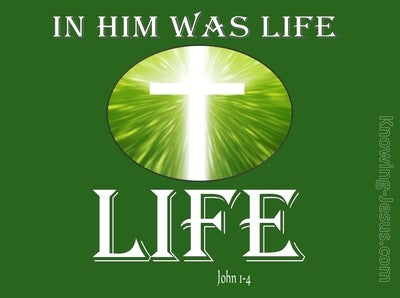 John 1:4 In Him Was Life (white)