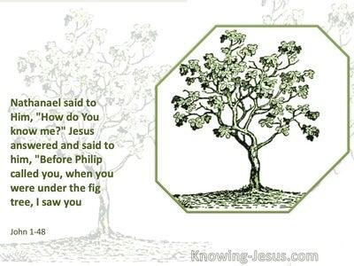 John 1:48 Before Philip Called You I Saw You (white)