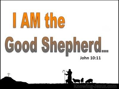 John 10:11 The Good Shepherd Lays Down His Life (white)