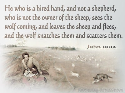 John 10:12 He Who Is A Hired Hand And Not A Shepherd (gray)