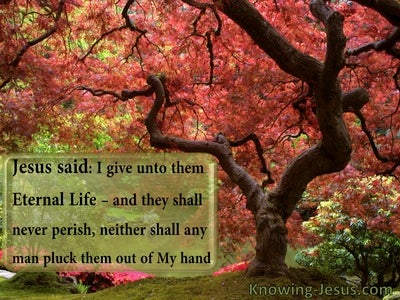 John 10:28 This Light Affliction (devotional)05:04 (sage)