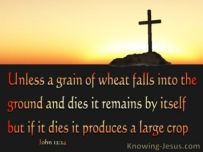 John 12:24 Dying To Live (devotional)11:10 (brown)