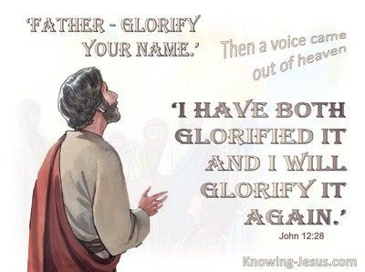 John 12:28 John Father Glorify Your name (brown)