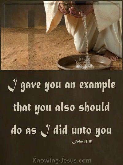 John 13:15 Jesus Our Example (brown)