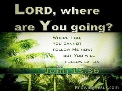 John 13:36 Where Are You Going (green)