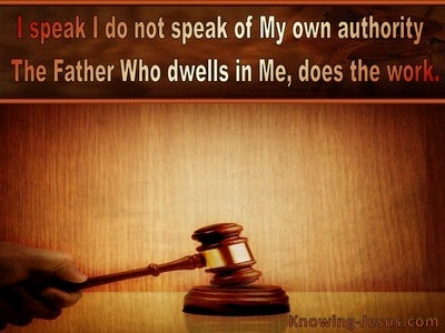 John 14:10 I Speak Not On My Own Authority (brown)