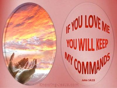 John 15:14 Keep My Commandments (pink)