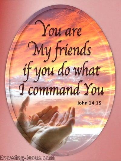 John 15:14 You Are My Friends (orange)