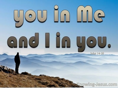 John 14:20 You Will Know That You Are In Me And I Am In You (brown)