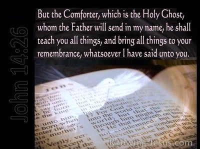 John 14:26 The Holy Spirit Whom The Father Will Send (pink)