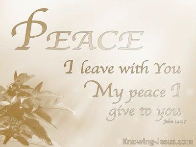 John 14:27 His Perfect Peace (devotional)06:26 (beige)