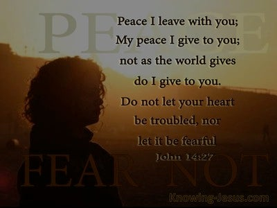 John 14:27 Let Not Your Heart Be Troubled (sage)