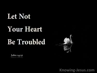 John 14:27 Let Not Your Heart Be Troubled (black)
