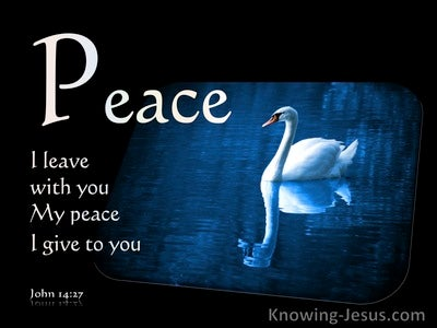 John 14:27 Peace I Leave With You My Peace I Give To You (white)