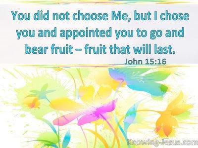 John 15:16 You Did Not Choose Me But I Chose You (windows)06:22
