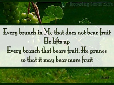 Image result for GOD PRUNES US TO BEAR MORE FRUITS