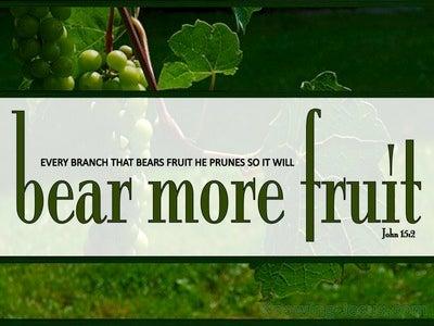 John 15:2 Every Branch That Bears Fruit (sage)