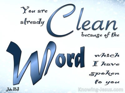 John 15:3 You Are Clean Because Of The Word (blue)