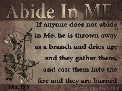 John 15:6 He Who Does Not Abide In Me Is Thrown Away (brown)