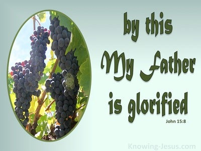 John 15:8 My Father Is Glorified When You Bear Much Fruit (green)