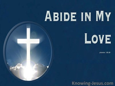 John 15:9 Abide In My Love (navy)