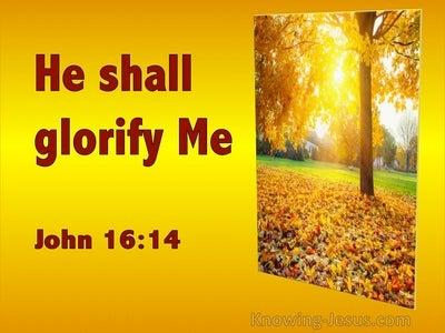 John 16:14 He Shall Glorify Me (utmost)11:29