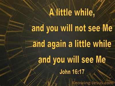 John 16:17 A Little While And You Will Not See Me (brown)